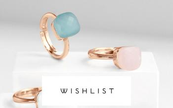 WISHLIST en vente flash sur BAZARCHIC