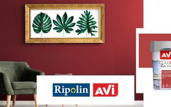 Vente privée RIPOLIN sur Vente-Privee.fr