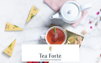 TEA FORTE en vente flash chez VEEPEE