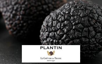 Vente privée PLANTIN sur Vente-Privee.fr